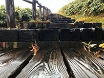 Ένα ξύλινο σχέδιο της περίπτωσης σκαλοπατιών στον πράσινο τομέα Στοκ φωτογραφίες με δικαίωμα ελεύθερης χρήσης