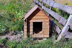 Ένα ξύλινο σκυλόσπιτο από το φράκτη και ένα μικρό πεύκο στη χλόη Στοκ εικόνες με δικαίωμα ελεύθερης χρήσης