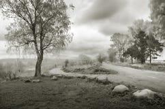 Ένα ομιχλώδες βόρειο πρωί μαύρο λευκό στοκ εικόνα