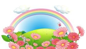 Ένα ουράνιο τόξο και ένας κήπος των λουλουδιών στους λόφους διανυσματική απεικόνιση