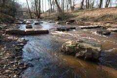 ένα πάρκο μέσα η Γερμανία στοκ φωτογραφίες με δικαίωμα ελεύθερης χρήσης