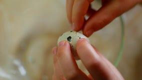 Ένα παιδί σπάζει ένα αυγό ορτυκιών βοήθεια mom στην κουζίνα απόθεμα βίντεο