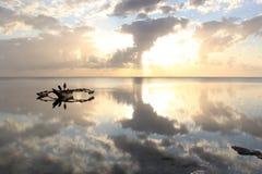 Ένα παραδοσιακό dhow στην αυγή Στοκ φωτογραφία με δικαίωμα ελεύθερης χρήσης