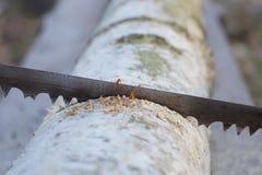 Ένα παλαιό σκουριασμένο πριόνι Στοκ Εικόνες