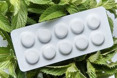 Ένα πιάτο με τα χάπια βρίσκεται στους φρέσκους κλάδους peppermint στοκ εικόνες