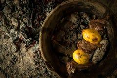 Ένα πιάτο στους κρύους άνθρακες Στοκ Εικόνες