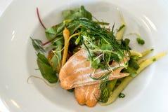 Ένα πιάτο του μαγειρευμένων σολομού και των φρέσκων λαχανικών Στοκ εικόνα με δικαίωμα ελεύθερης χρήσης