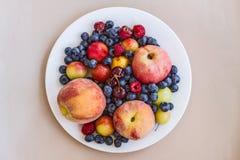 Ένα πιάτο των ορεκτικών ώριμων juicy γλυκών φρούτων και των μούρων: ροδάκινα, μήλα, δαμάσκηνα, δαμάσκηνα κερασιών, σμέουρα, βακκί Στοκ Εικόνες