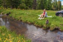 Ένα πικ-νίκ στις όχθεις ενός ποταμού βουνών με την πράσινη χλόη και των κίτρινων λουλουδιών στα πλαίσια των κωνοφόρων δέντρων και στοκ φωτογραφίες