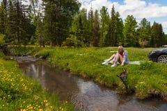 Ένα πικ-νίκ στις όχθεις ενός ποταμού βουνών με την πράσινη χλόη και των κίτρινων λουλουδιών στα πλαίσια των κωνοφόρων δέντρων και στοκ εικόνα με δικαίωμα ελεύθερης χρήσης