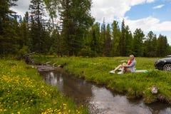 Ένα πικ-νίκ στις όχθεις ενός ποταμού βουνών με την πράσινη χλόη και των κίτρινων λουλουδιών στα πλαίσια των κωνοφόρων δέντρων και στοκ εικόνες