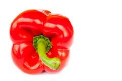 Ένα πιπέρι, που απομονώνεται κόκκινο Στοκ Εικόνα