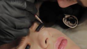 Ένα πολύ όμορφο κορίτσι σε ένα σαλόνι ομορφιάς κάνει μια ελασματοποίηση μαστιγώνει Το Beautician βάζει το χρώμα στα eyelashes απόθεμα βίντεο