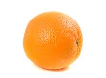 ένα πορτοκαλί συνηθισμέν&omicro Στοκ φωτογραφία με δικαίωμα ελεύθερης χρήσης