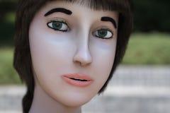 Ένα πορτρέτο μιας εικονικής γυναίκας Στοκ φωτογραφίες με δικαίωμα ελεύθερης χρήσης