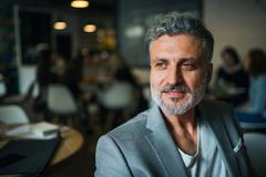 Ένα πορτρέτο μιας ώριμης συνεδρίασης επιχειρηματιών σε έναν καφέ r στοκ φωτογραφίες με δικαίωμα ελεύθερης χρήσης