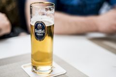 Ένα ποτήρι της γερμανικής μπύρας σε έναν πίνακα με το λογότυπο επιχείρησης gaffel koelsch στοκ φωτογραφίες
