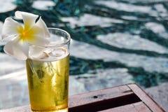 Ένα ποτήρι της μπύρας με το λουλούδι plumeria στην ξύλινη καρέκλα στην πισίνα Στοκ εικόνα με δικαίωμα ελεύθερης χρήσης
