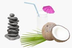 Ένα ποτήρι του γάλακτος και των φρούτων καρύδων Στοκ εικόνες με δικαίωμα ελεύθερης χρήσης