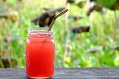 Ένα ποτήρι των παγωμένων τροπικών fruity μη αλκοολούχων ποτών σε μια παλαιά σανίδα στον κήπο στοκ εικόνες