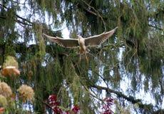 Ένα πουλί που τρέπεται σε φυγή Στοκ φωτογραφίες με δικαίωμα ελεύθερης χρήσης