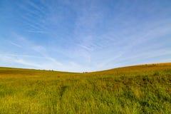 Ένα πράσινο τοπίο του Σάσσεξ Στοκ Εικόνες