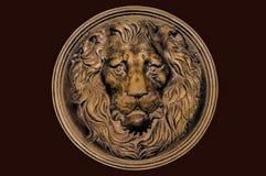 Ένα πρόσωπο λιονταριών Στοκ Εικόνα