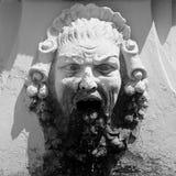 Ένα πρόσωπο scream1 πετρών στοκ εικόνα