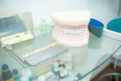 Ένα πρότυπο των ανθρώπινων δοντιών βρίσκεται σε ένα ράφι γυαλιού στοκ φωτογραφία