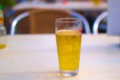 Ένα πλήρες ποτήρι της κρύας μπύρας μια καυτή ημέρα, οινόπνευμα, ποτό Στοκ εικόνα με δικαίωμα ελεύθερης χρήσης