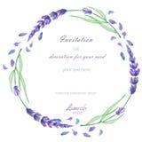 Ένα πλαίσιο κύκλων, στεφάνι, σύνορα πλαισίων με lavender watercolor ανθίζει, γαμήλια πρόσκληση Στοκ Φωτογραφίες