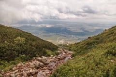 Ένα ρεύμα βουνών στο υψηλό Tatras Στοκ εικόνα με δικαίωμα ελεύθερης χρήσης
