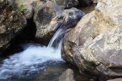 Ένα ρεύμα του νερού Στοκ φωτογραφίες με δικαίωμα ελεύθερης χρήσης