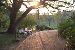 Ένα ρομαντικό τοπίο στο βράδυ στο πάρκο στοκ εικόνες