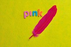 Ένα ρόδινο φτερό με το ροζ λέξης Στοκ φωτογραφία με δικαίωμα ελεύθερης χρήσης