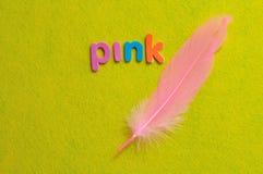 Ένα ρόδινο φτερό με το ροζ λέξης Στοκ Εικόνες
