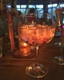 Ένα ρόδινο χρωματισμένο ποτό τζιν Στοκ φωτογραφία με δικαίωμα ελεύθερης χρήσης