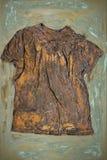 Ένα σκουριασμένο πουκάμισο στην τέχνη καμβά Στοκ Εικόνες
