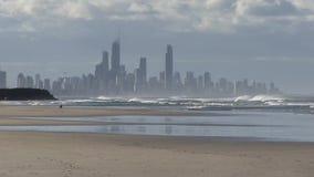 Ένα σκυλί που απολαμβάνει τα ξημερώματα στο Palm Beach, Gold Coast, Αυστραλία απόθεμα βίντεο