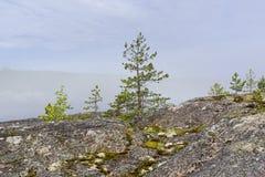 Ένα σπάνιο καιρικό φαινόμενο - ένα σύννεφο στην επιφάνεια μιας λίμνης επάνω Στοκ Εικόνα