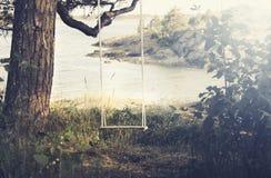 Ένα σπίτι έκανε την ένωση ταλάντευσης από ένα δέντρο δίπλα σε μια λίμνη στοκ φωτογραφίες