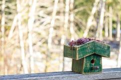 Σπίτι πουλιών με την πράσινη στέγη eco Στοκ εικόνες με δικαίωμα ελεύθερης χρήσης