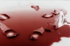 Ένα σπασμένο γυαλί κρασιού στοκ εικόνα