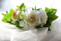 Ένα στεφάνι των άσπρων λουλουδιών και των πράσινων φύλλων σε ένα άσπρο υπόβαθρο στοκ φωτογραφία