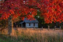 Ένα σχολείο δωματίων, κόκκινα φθινοπώρου, εθνικό πάρκο χάσματος του Cumberland Στοκ Εικόνες