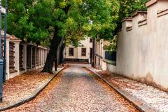 Ένα σύνολο οδικού Wiev με τα φύλλα πτώσης, VyÅ ¡ ehrad, Πράγα, Δημοκρατία της Τσεχίας Στοκ φωτογραφία με δικαίωμα ελεύθερης χρήσης