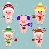 Ένα σύνολο πέντε-χοίρων στα διαφορετικά καπέλα και ενός μαντίλι με τα φλυτζάνια των διαφορετικών ζεστών ποτών christmas happy mer διανυσματική απεικόνιση