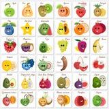 Ένα σύνολο πινάκων με τα εξωτικά φρούτα Στοκ Εικόνες