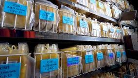 Ένα σύνολο ραφιών των τσαντών με το κίτρινο πλάσμα σε μια εργαστηριακή αποθήκευση απόθεμα βίντεο