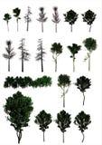 Ένα σύνολο δέντρων. (PNG) Στοκ εικόνα με δικαίωμα ελεύθερης χρήσης